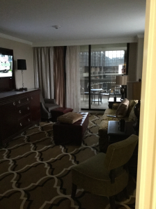 Living Room of Intercontinental